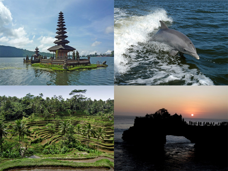 Welcome to bali bali happy tour tours on bali altavistaventures Choice Image